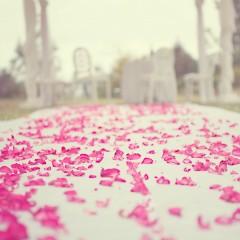Pourquoi un wedding planner ?