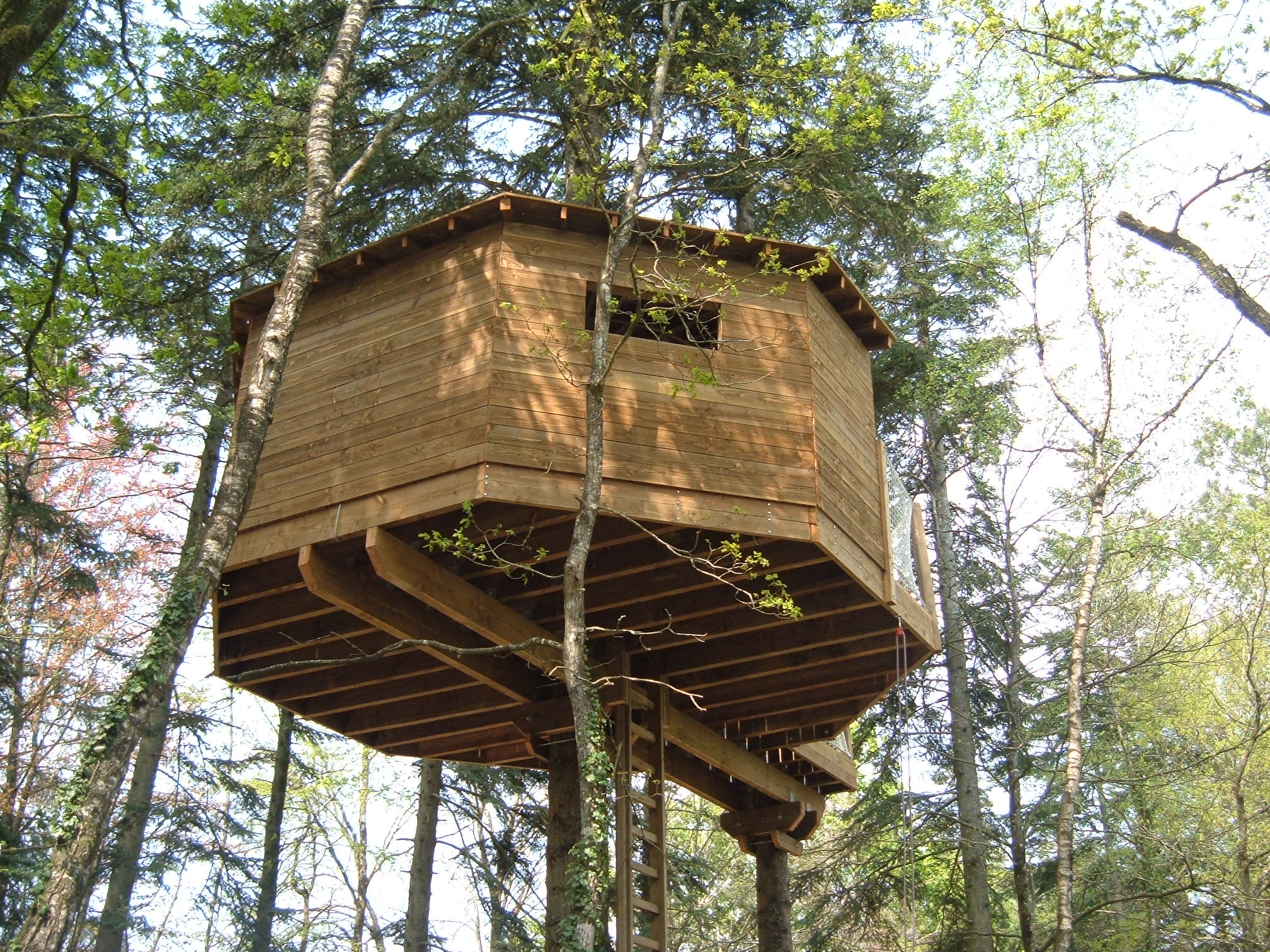 cabane perchée glamping