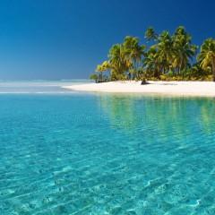 Et si on allait se réchauffer sous le soleil de la Guadeloupe ?