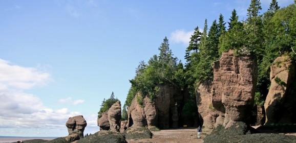 Rochers Hopewell, un lieu privilégié pour les passionnés de la nature