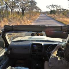 Aventure et safari dans le parc national de Kruger