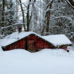 Comment bien profiter de l'hiver en Finlande