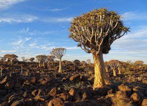 Visiter trois endroits magnifiques de la Namibie